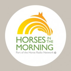 Horses In The Morning logo design