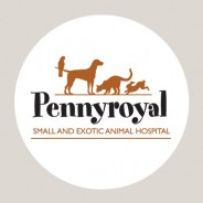 A premium design for Pennyroyal